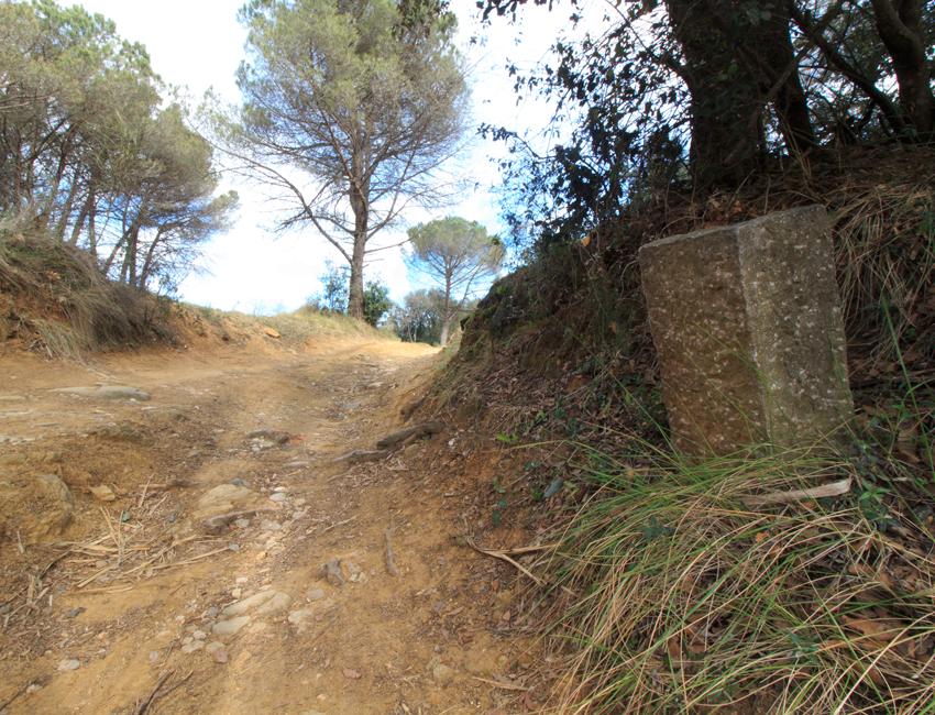 Topografia Girona camins privats / fites